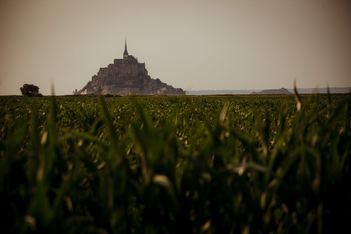 Mont Saint Michel silhouette in the fields