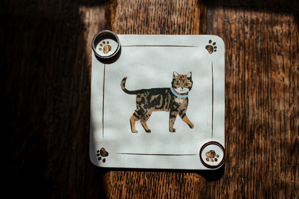 wedding rings on a cat placemat
