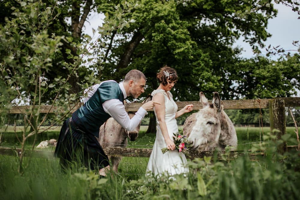 bride and groom with donkeys martinstown house country house wedding venue