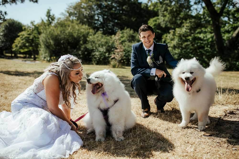 bride and groom with their dogs at the wedding