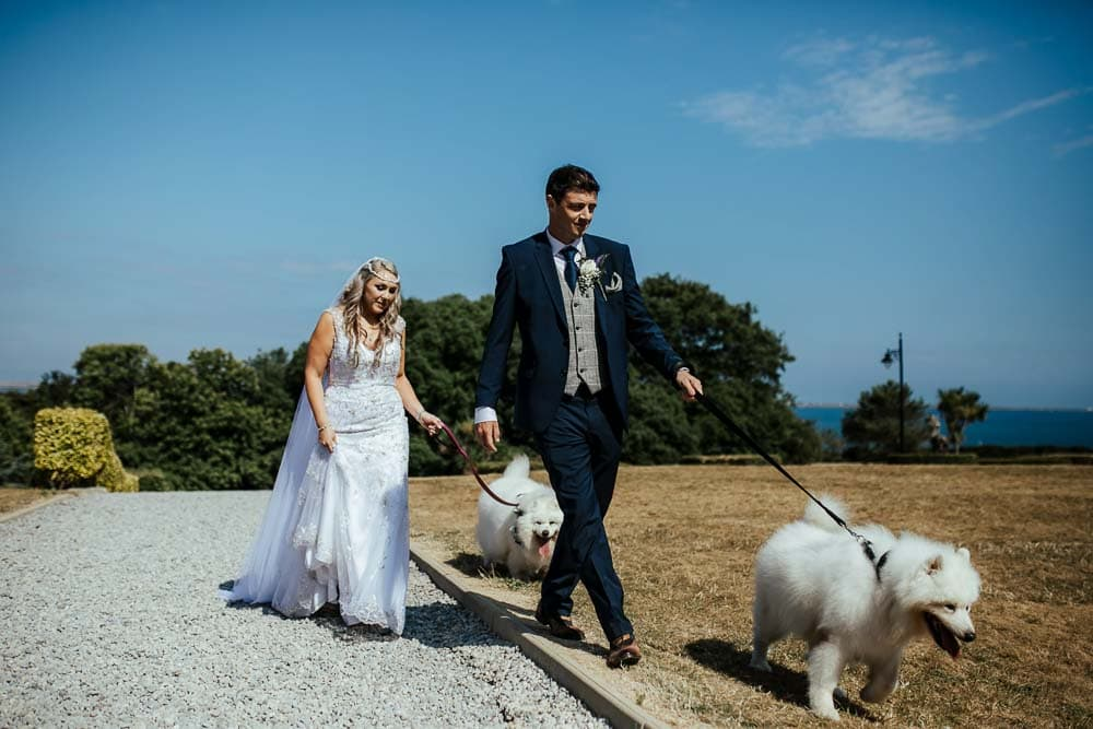 bride and groom walking their dogs at the wedding