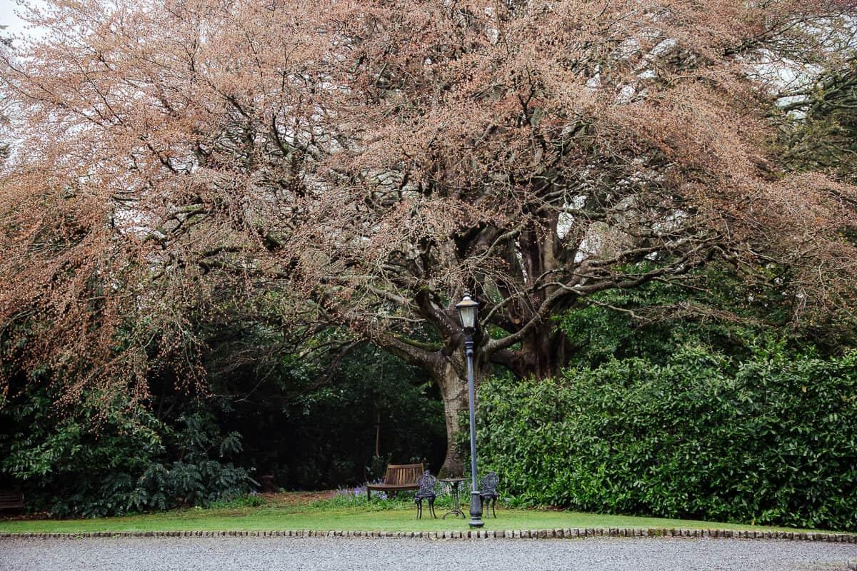 trudder lodge wedding venue gardens