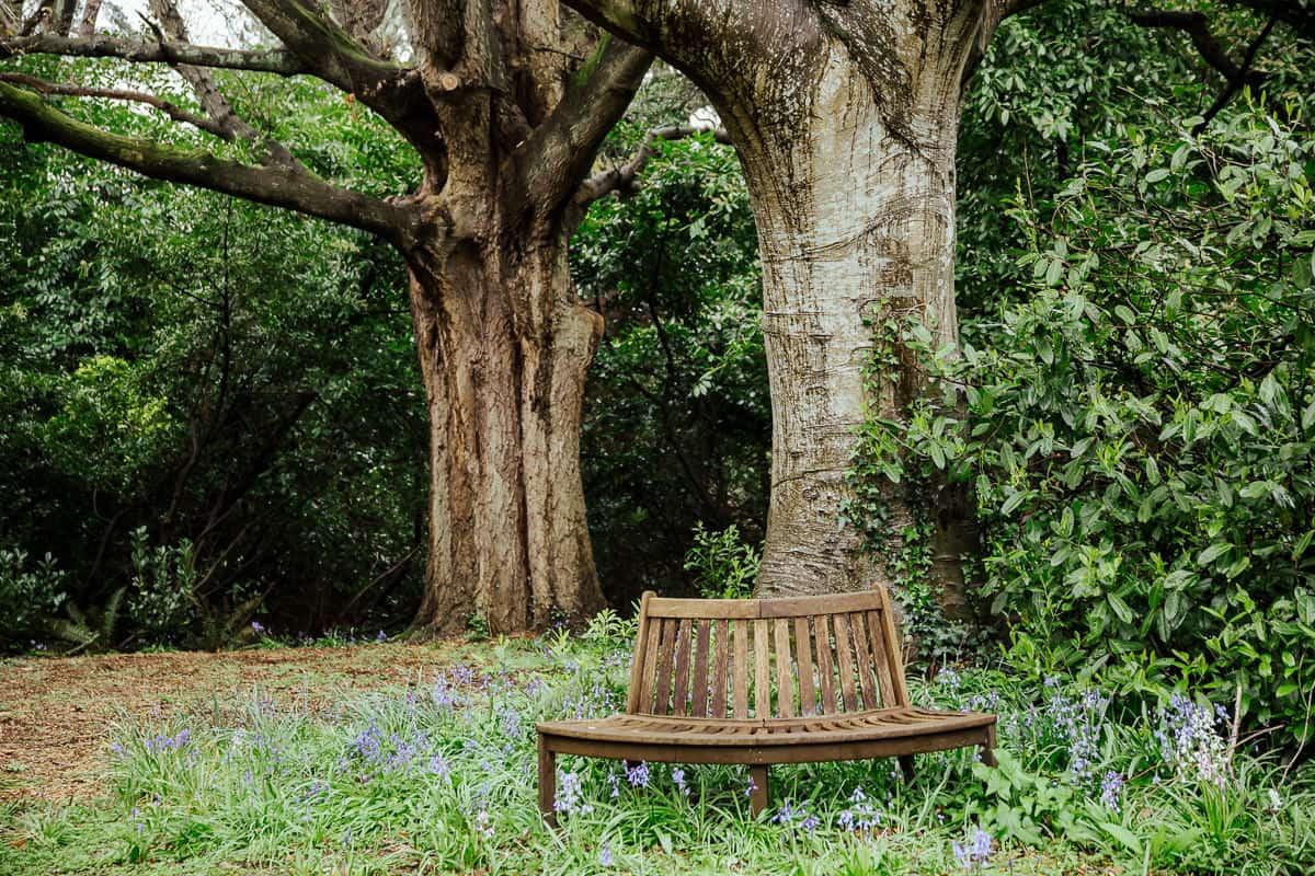 walled garden at trudder lodge outdoor wedding ceremony