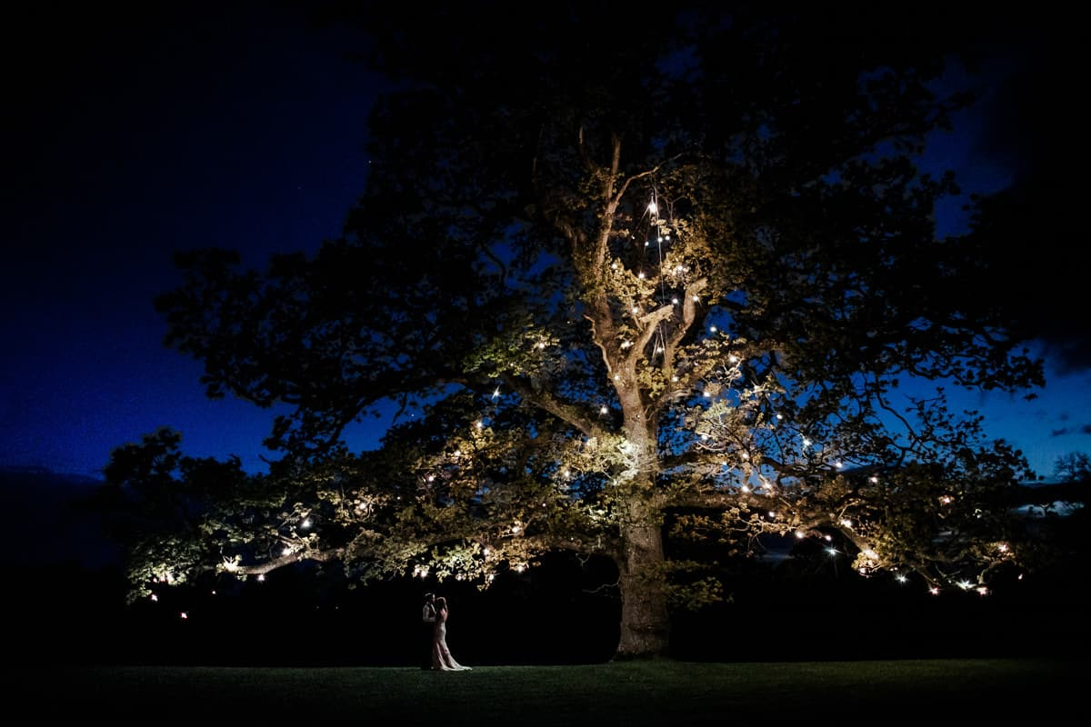 rathsallagh house night tree photo